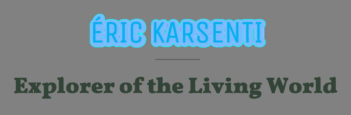 karsenti_title_uk